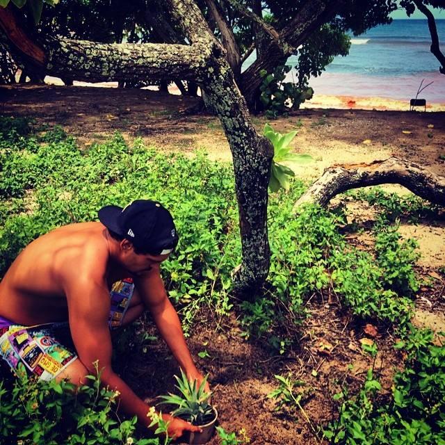 ハワイ環境保護ボードショーツ