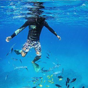 ハワイ水中フォトグラファー